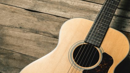 the history of the acoustic guitar